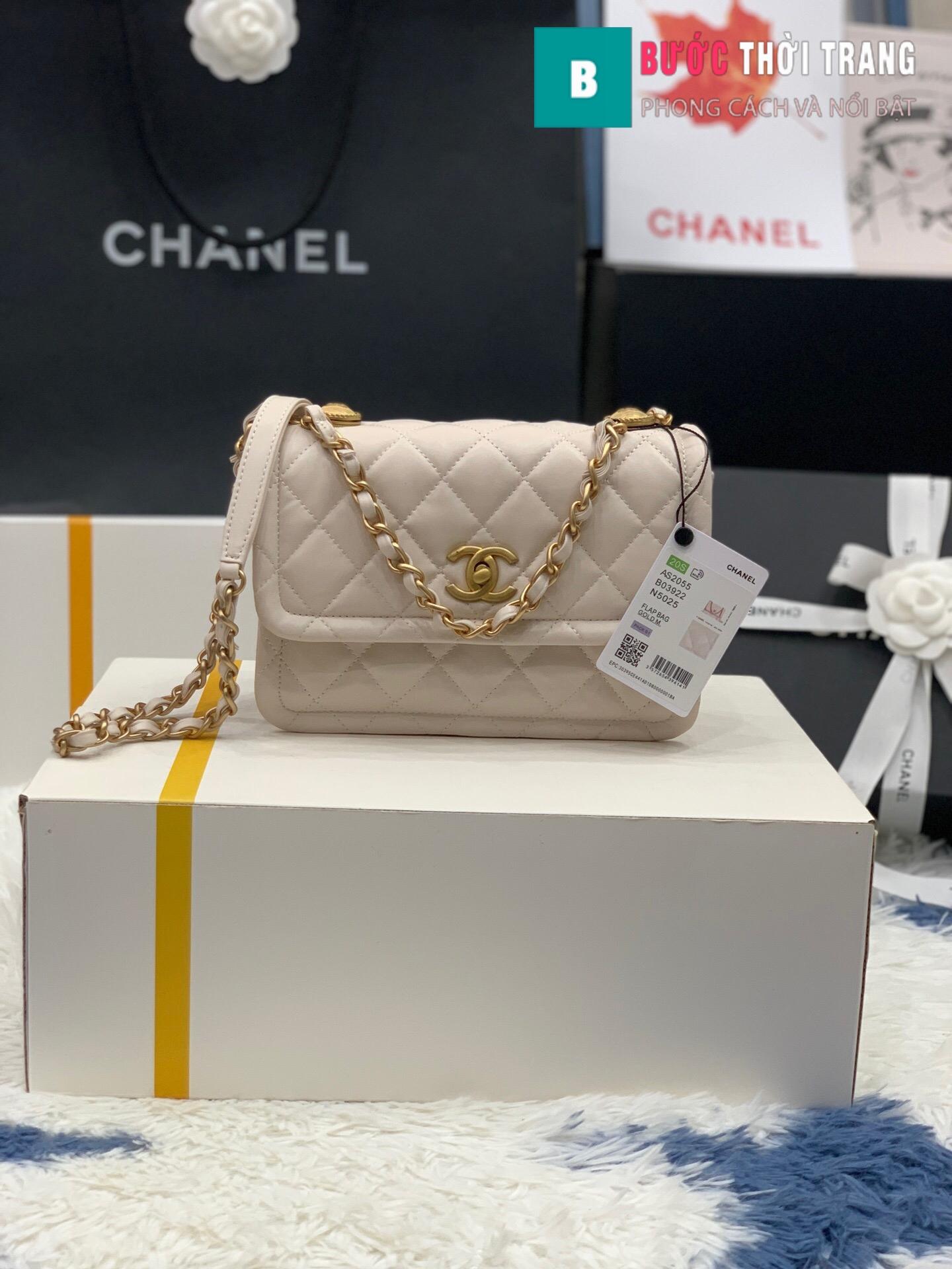 Túi xách Chanel Crossbody Bag siêu cấp size 22 cm – AS2055 (19)