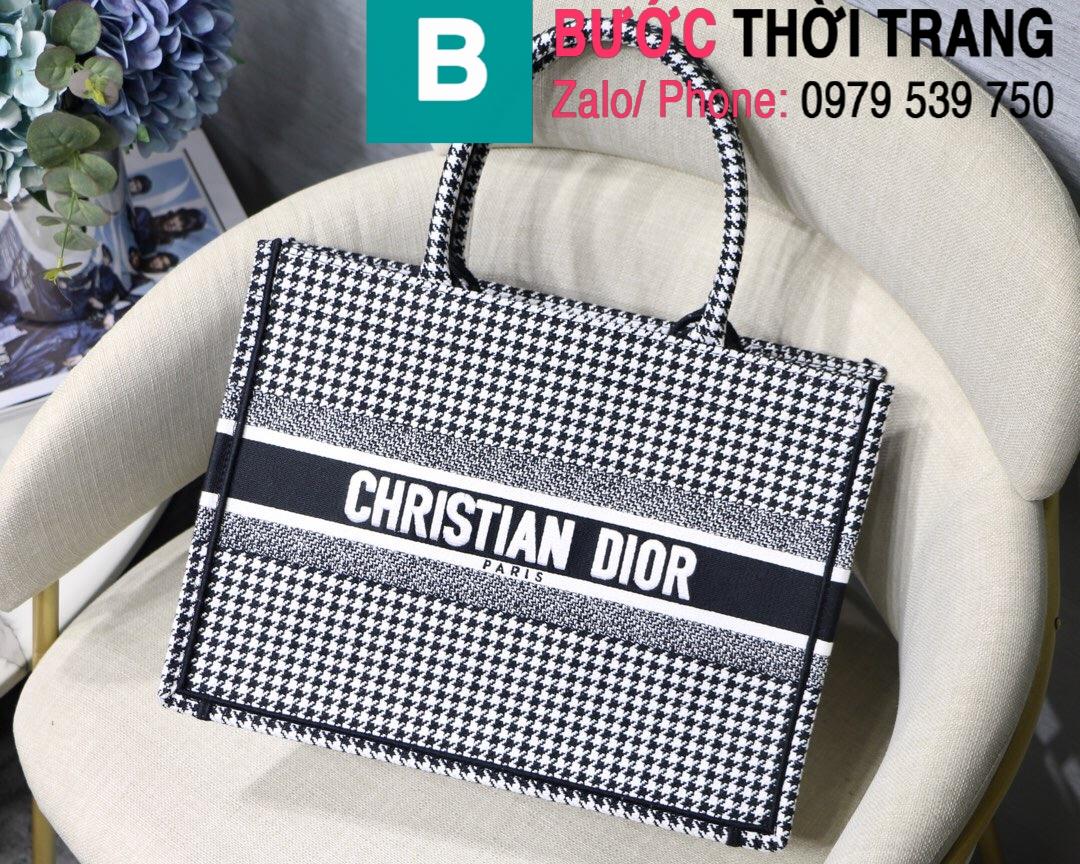 Túi xách Dior Book Tote (19)