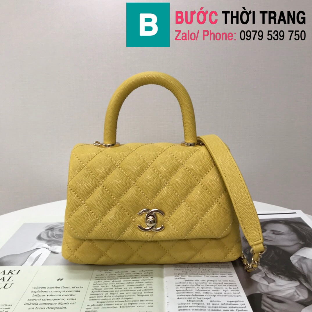 Túi xách Chanel Coco Handle Mini bag (19)